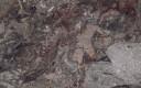 Gris Terrazo Marble, Mexico